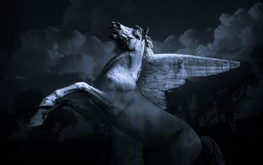 Pegasus_postImage